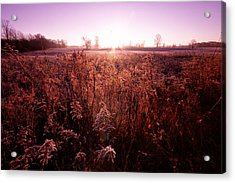 Acrylic Print featuring the photograph Frosty Sunrise by Lars Lentz