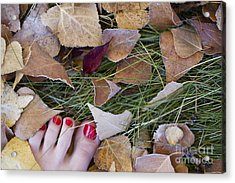 Frosty Toes Acrylic Print