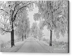 Frosty Winter Morning Acrylic Print by Veikko Suikkanen