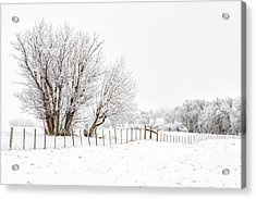 Frosty Winter Scene Acrylic Print