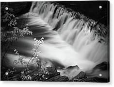 Frothy Falls Acrylic Print