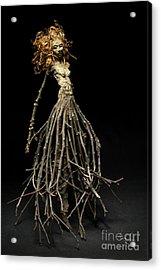 Frou Frou's Dance Acrylic Print by Adam Long