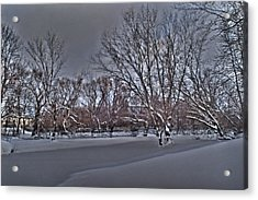 Frozen At The Creek's Edge Acrylic Print by Steven Geer
