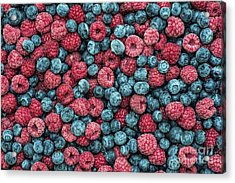 Frozen Berries Acrylic Print by Tim Gainey