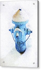 Acrylic Print featuring the photograph Frozen Blue Fire Hydrant by Andee Design