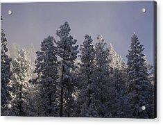 Acrylic Print featuring the photograph Frozen by Ellen Heaverlo