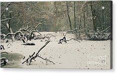 Frozen Fallen Wide Acrylic Print by Andy Smy