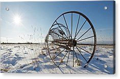 Frozen In Time. Acrylic Print by Kelly Nelson
