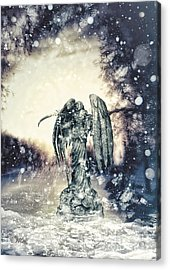 Frozen Acrylic Print by Mo T