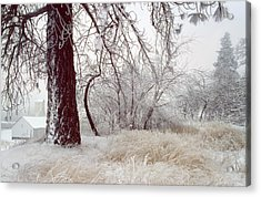 Frozen Morning In Palouse Acrylic Print by Jerry McCollum