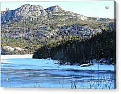 Frozen Pond Acrylic Print by Barbara Griffin