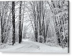 Frozen Road Acrylic Print by Mike Dawson