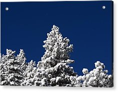 Frozen Tranquility Ute Pass Cos Co Acrylic Print