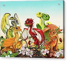 Fruit Medley Dragons Acrylic Print