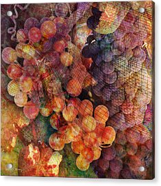 Fruit Of The Vine Acrylic Print by Barbara Berney
