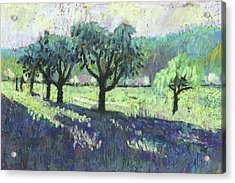 Fruit Trees, Spring Landscape Acrylic Print by Martin Stankewitz