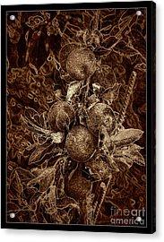 Fruits Of The Loom Acrylic Print