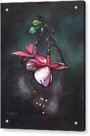 Fuchsia And Dew  Acrylic Print