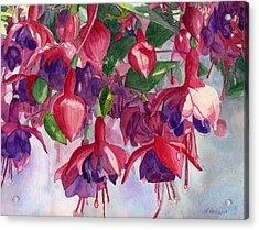 Fuchsia Frenzy Acrylic Print