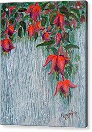 Fuchsia On The Fence Acrylic Print