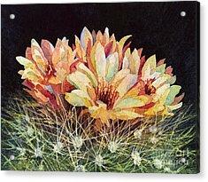 Full Bloom Acrylic Print by Hailey E Herrera