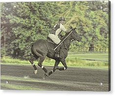 Full Gallop Pony Acrylic Print by JAMART Photography