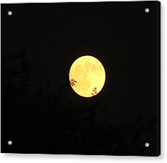 Full Moon August 2008 Acrylic Print