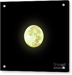 Full Moon August 2014 Acrylic Print by D Hackett