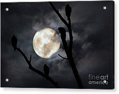 Acrylic Print featuring the photograph Full Moon Committee by Darren Fisher