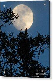 Full Moon Acrylic Print by Greg Patzer