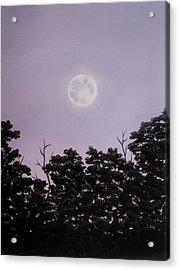 Full Moon On A Summer Evening Acrylic Print by Anna Bronwyn Foley