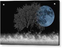 Full Moon Over Iced Tree Acrylic Print