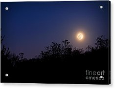 Full Moon Rising Over Trees Acrylic Print by Sharon Dominick