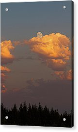 Full Moonrise Over Tree Silhouette Acrylic Print by David Gn