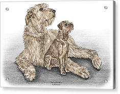Full Of Promise - Irish Wolfhound Dog Print Color Tinted Acrylic Print by Kelli Swan