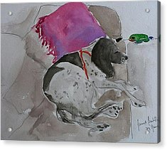 Fulmi And Pink Pillow Acrylic Print by Janet Butler