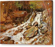 Fumee Falls Quinnessec Mi Acrylic Print by Larry Seiler