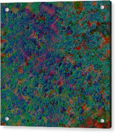 Fun 1 Acrylic Print by Sue Duda