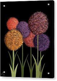 Fun Colours Acrylic Print