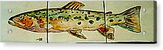 Fun Fish Acrylic Print by Sandra Maddox