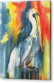 Funky Pelican Acrylic Print