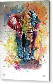 Acrylic Print featuring the painting Funny Elephant by Kovacs Anna Brigitta