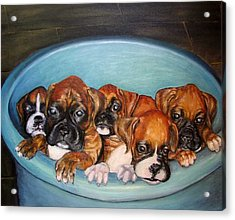 Funny Puppies Orginal Oil Painting Acrylic Print by Natalja Picugina
