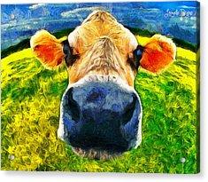 Funnycow Acrylic Print