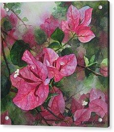 Fuschia Bougainvillea Acrylic Print by Karen  Sioson