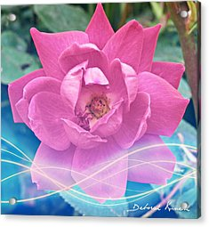 Fuschia Flower Energy Acrylic Print