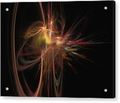 Fusion Acrylic Print by David Lane