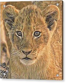 Fuzzy Cubby Acrylic Print