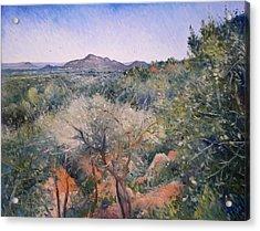 Gaberone Botswana 2008  Acrylic Print by Enver Larney