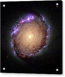 Galaxy Ngc 1512 Acrylic Print